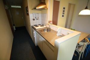 Appartement De Zeehond Amelander-Kaap, Апартаменты  Холлум - big - 3