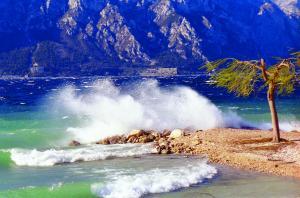 obrázek - Albergo San Remo