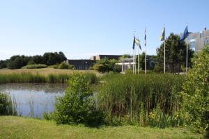Appartement TIME-OUT - Amelander Kaap, Апартаменты  Холлум - big - 30