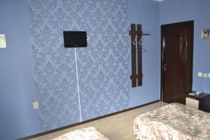 Отель Александра - фото 25