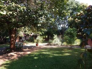 Green Tree Lodge, Lodges  Livingstone - big - 3