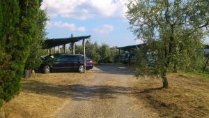 Agriturismo Bellavista, Residence  Incisa in Valdarno - big - 65