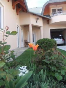 Castelinho Apartmanház, Ferienwohnungen  Gyenesdiás - big - 12