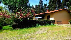 Agriturismo Bellavista, Residence  Incisa in Valdarno - big - 5