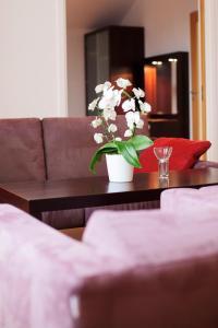 Hotel Skansen, Hotels  Färjestaden - big - 10