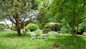 La Cascade de Hauterive, Bed and Breakfasts  Pinel-Hauterive - big - 51