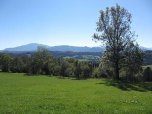 Hirmhof, Agriturismi  Reinsberg - big - 33