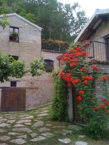 Vecchia Fornace Paradiso, Bed and Breakfasts  Santa Vittoria in Matenano - big - 11