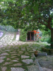 Vecchia Fornace Paradiso, B&B (nocľahy s raňajkami)  Santa Vittoria in Matenano - big - 9
