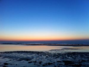 Beach 51(Zandvoort)