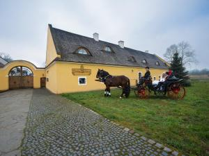 Dvur Olšiny -Hotel and Horse-riding