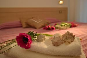 Hotel Baltic, Отели  Мизано-Адриатико - big - 34