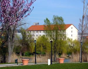 (Oekotel Tópark Hotel)