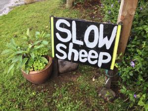 SlowSheep B&B
