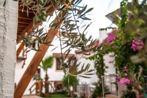 Courtyard, Hotely  Kalkan - big - 41