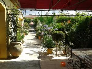 Aux Amandiers, Bed and Breakfasts  Fréjus - big - 1