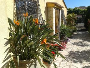 Aux Amandiers, Bed and Breakfasts  Fréjus - big - 20