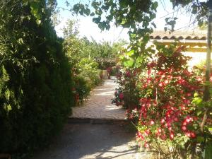 Aux Amandiers, Bed and Breakfasts  Fréjus - big - 3