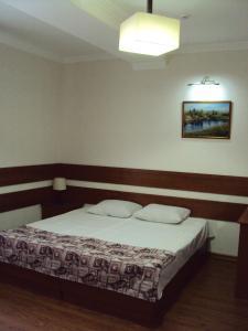 Отель Аранда - фото 21