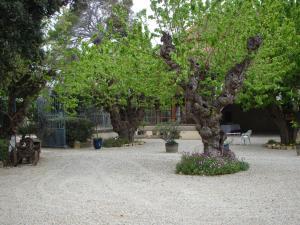 Chateau Pech-Céleyran, Bed & Breakfasts  Salles-d'Aude - big - 51