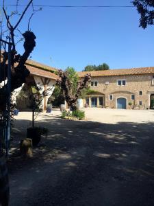Chateau Pech-Céleyran, Bed & Breakfasts  Salles-d'Aude - big - 8