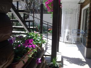 Гостевой дом Белка - фото 15