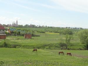 Гостевой дом Суздаль-Терем - фото 9