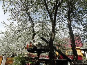 Гостевой дом Суздаль-Терем - фото 10