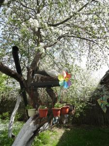 Гостевой дом Суздаль-Терем - фото 11
