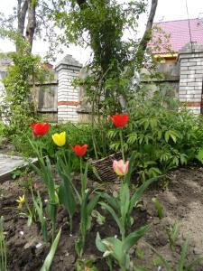Гостевой дом Суздаль-Терем - фото 25
