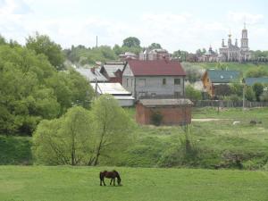 Гостевой дом Суздаль-Терем - фото 26