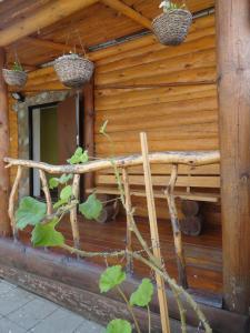 Гостевой дом Суздаль-Терем - фото 6