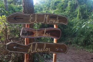 El Monte de los Abuelos