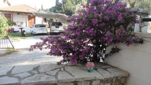 obrázek - Casa di Giorgio