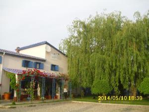 Pension Giulia, Guest houses  Timişoara - big - 24
