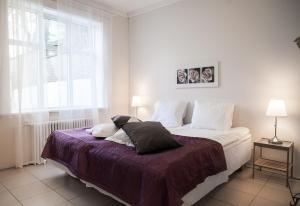 Barónsstígur Apartments