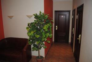 Отель Тревел - фото 22