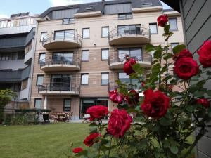 Rooms & Apartments Housingbrussels, Apartmány  Brusel - big - 37