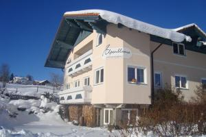 Appartement Alpenblume, Apartments  Schladming - big - 15