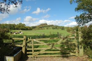 Orchard Barn, Woodhayes