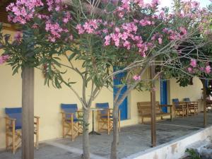 Agios Antonios(Perissa)