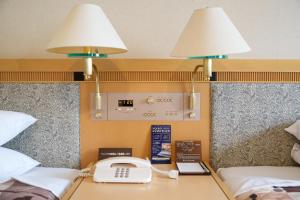 Grand Hotel Hakusan, Hotel  Hakusan - big - 16