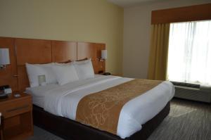 Comfort Suites Bossier City, Szállodák  Bossier City - big - 9