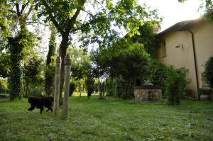 La Fratta Art - House