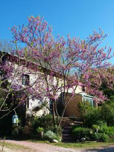 Gîte Au Jardin, Nyaralók  Meilhan-sur-Garonne - big - 6
