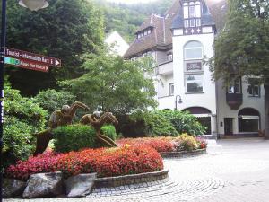 Harzburger Ferienwohnung