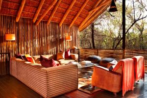 Jaci's Tree & Safari Lodges
