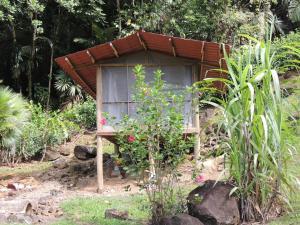 Pacuare River Lodge, Лоджи  Bajo Tigre - big - 9