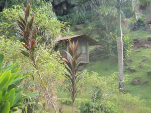 Pacuare River Lodge, Лоджи  Bajo Tigre - big - 11