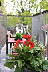Balcony/terrace The Parkway Place Guesthouse